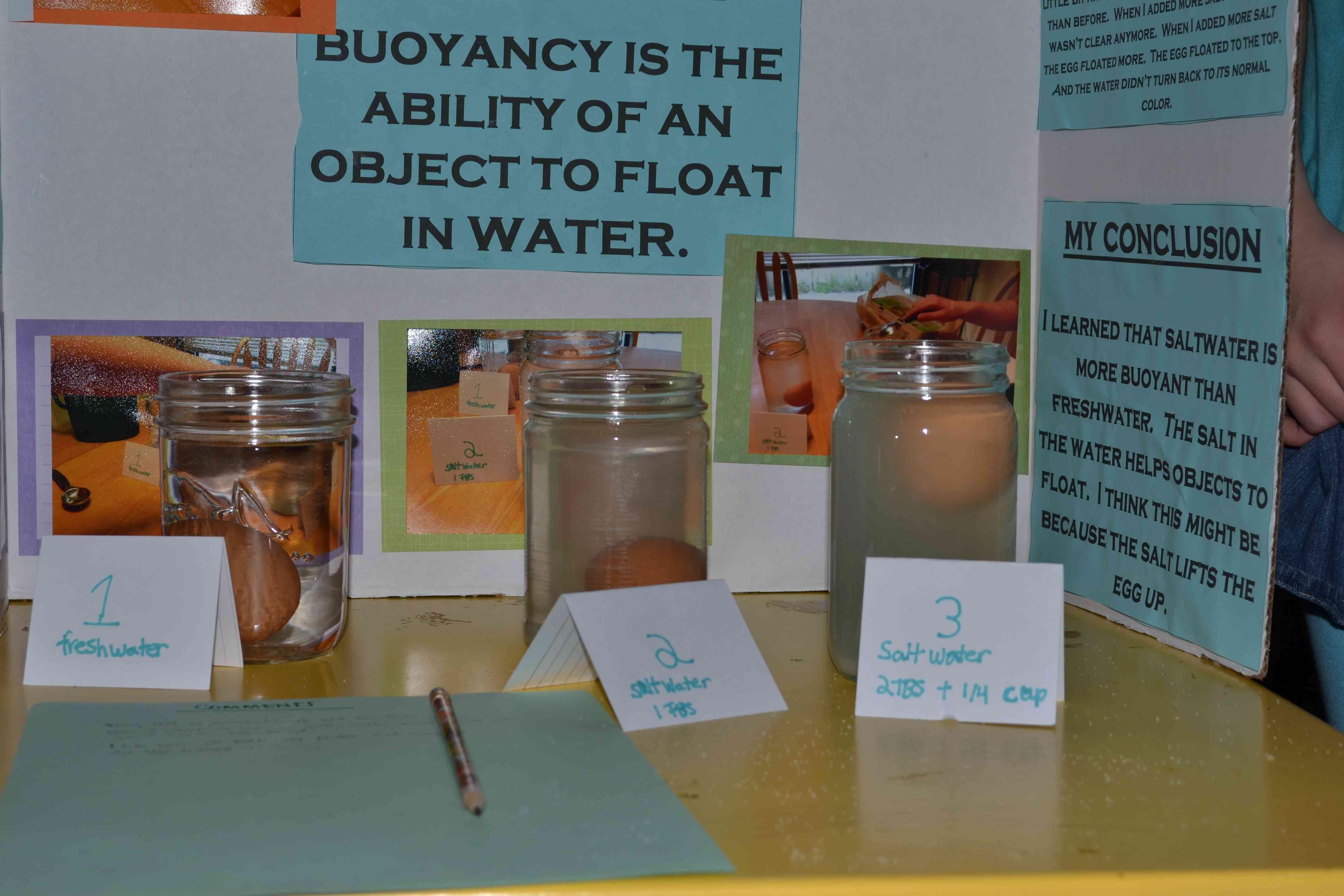 Our Science Fair – Naturally Fun Days