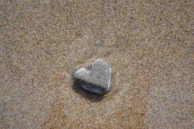DSC_0135-small heart