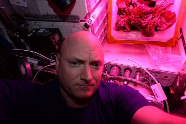 Scott Kelly and lettuce selfie from ISS August 2015